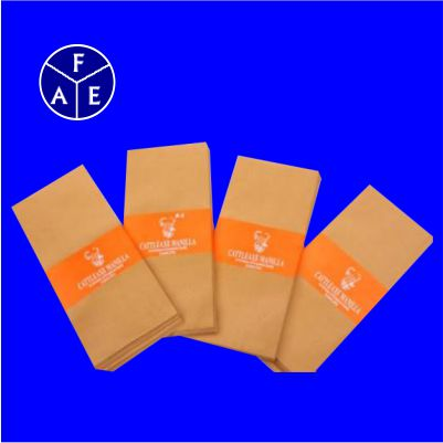 9 X 4 PLS Brown Envelope